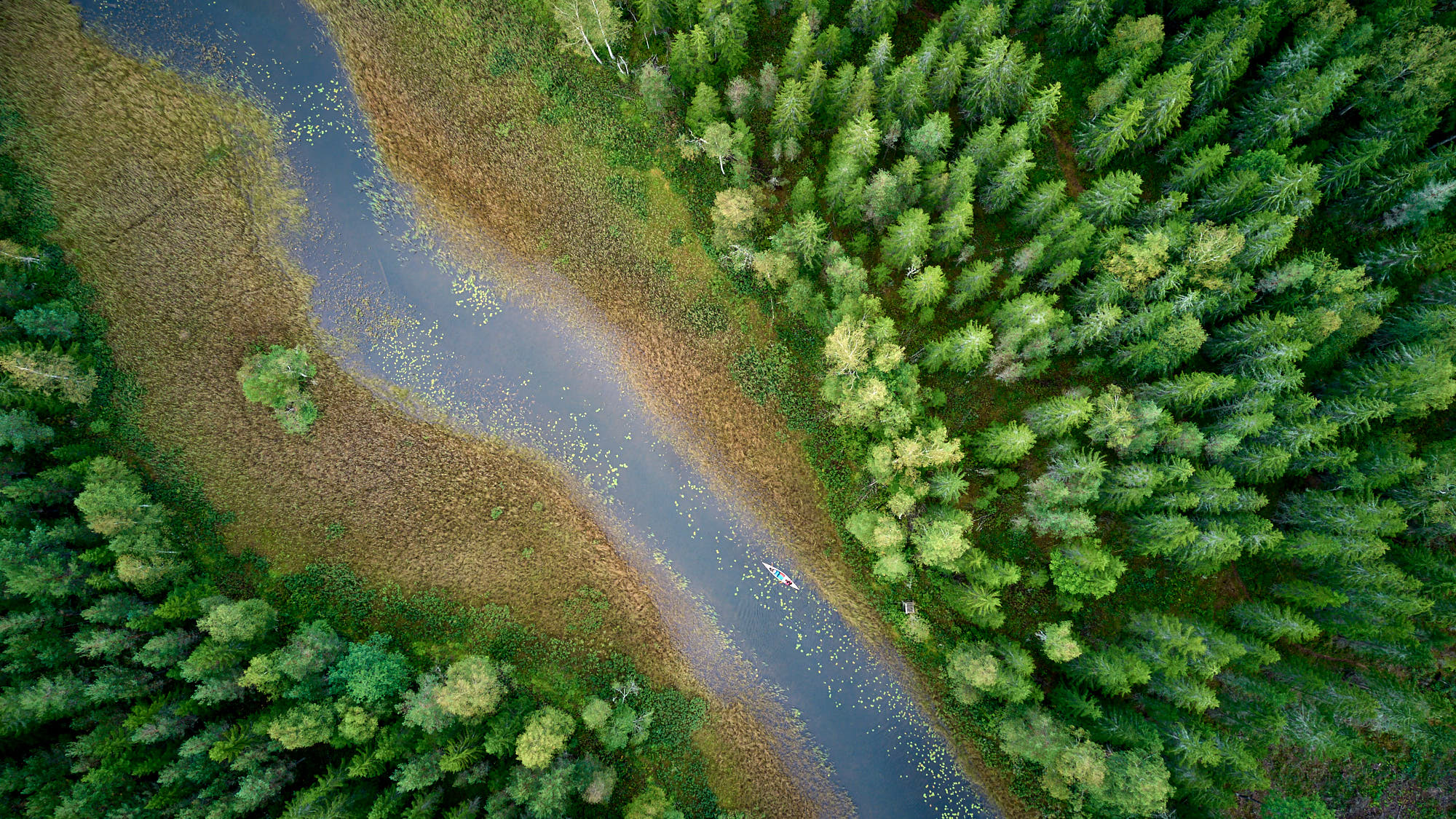 Aerial view of a canoe on a small river in Sweden